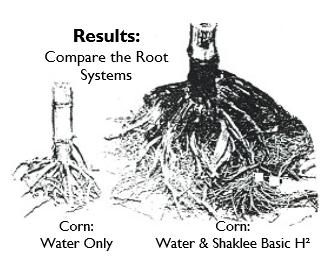 Basic H2 Farming-Gardening