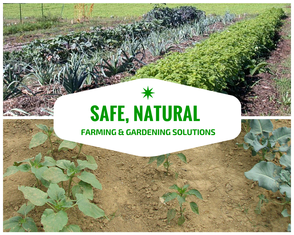 Safe, Natural Farming & Gardening